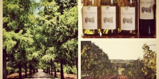 Introduction: Meet Fall Creek Vineyards