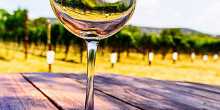 Introduction: Meet Perissos Vineyard and Winery